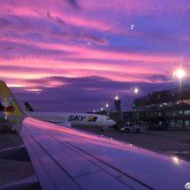 purple sky japan