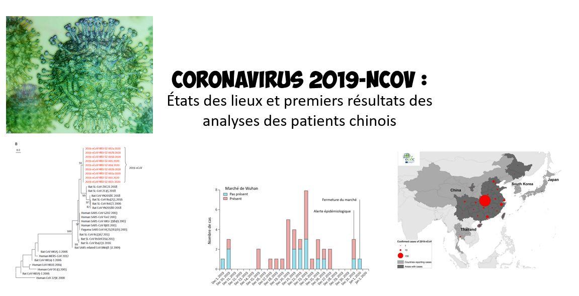 Mise à jour du nouveau coronavirus 2019 (2019-nCoV): découverture du virus
