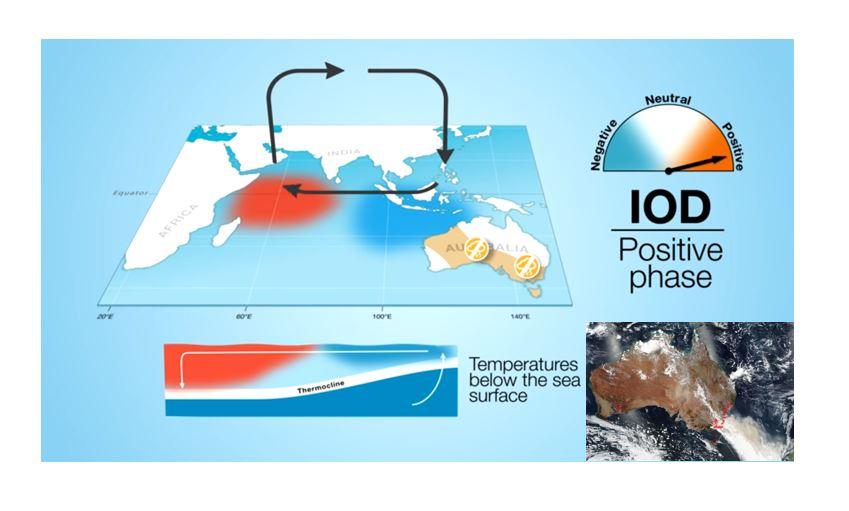 dipole ocean indien incendie v2