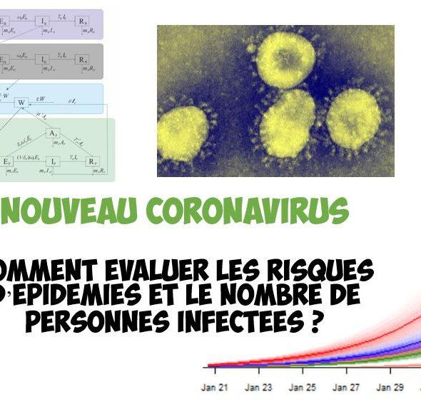 nouveau coronavirus epidemiologie compartiments