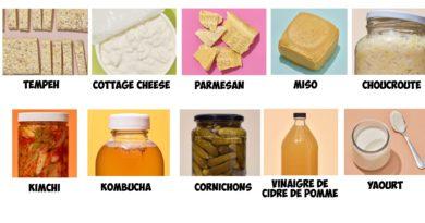Probiotique, prébiotiques, aliments fermentés et santé : que valent-ils ?