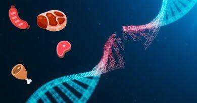 mutation cancer viande rouge